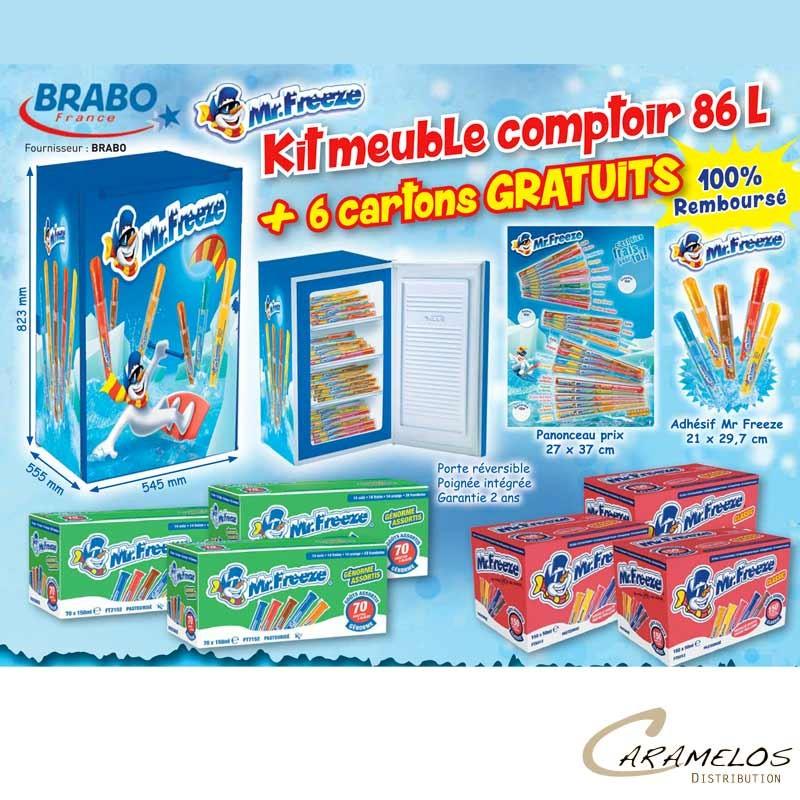 KIT ARMOIRE MR FREEZE 86L + 6 Cartons au tarif pro